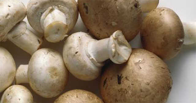nutrition-value-of-mushrooms-640x336